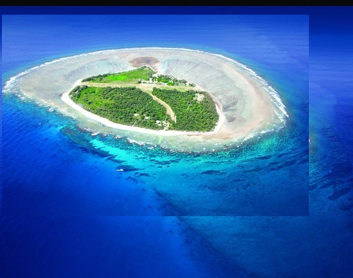 Lady Elliot Island2
